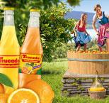 """""""A guada Jahrgang"""": FRUCADE bereichert die Limonadenkultur in der Gastronomie"""